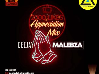 Deejay Malebza, 2000 Likes Appreciation Mix, mp3, download, datafilehost, toxicwap, fakaza, Afro House, Afro House 2019, Afro House Mix, Afro House Music, Afro Tech, House Music