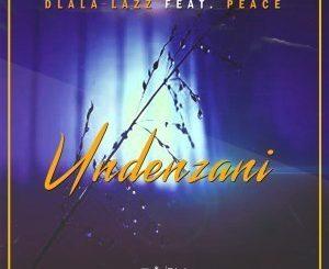 Dlala Lazz, Undenzani, Peace, mp3, download, datafilehost, fakaza, Afro House, Afro House 2019, Afro House Mix, Afro House Music, Afro Tech, House Music