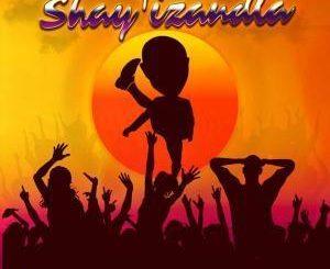 Dr Malinga, Havoc Fam, Shay'izandla, mp3, download, datafilehost, fakaza, Gqom Beats, Gqom Songs, Gqom Music, Gqom Mix, House Music