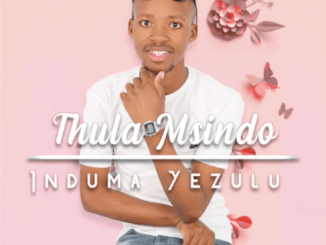 ThulaMsindo, Umcimbi wengane (Original Mix), mp3, download, datafilehost, toxicwap, fakaza, Gqom Beats, Gqom Songs, Gqom Music, Gqom Mix, House Music