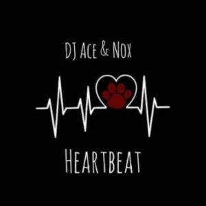 DJ Ace , Nox, Heartbeat, mp3, download, datafilehost, toxicwap, fakaza, Afro House, Afro House 2019, Afro House Mix, Afro House Music, Afro Tech, House Music