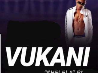 Vukani, Kabza De Small, Shelela, mp3, download, datafilehost, toxicwap, fakaza, Afro House, Afro House 2019, Afro House Mix, Afro House Music, House Music, Amapiano, Amapiano 2019, Amapiano Mix, Amapiano Music