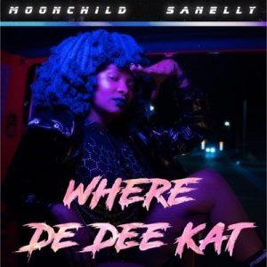 Moonchild Sanelly, Where De Dee Kat, mp3, download, datafilehost, toxicwap, fakaza, Gqom Beats, Gqom Songs, Gqom Music, Gqom Mix, House Music