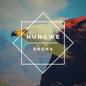 Shona (SA), Zimkitha, Ndiyekele, mp3, download, datafilehost, toxicwap, fakaza, Afro House, Afro House 2019, Afro House Mix, Afro House Music, Afro Tech, House Music