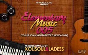 XoliSoul , LaDess, Music Fellas, Elementary Music 005, mp3, download, datafilehost, toxicwap, fakaza, Afro House, Afro House 2019, Afro House Mix, Afro House Music, Afro Tech, House Music