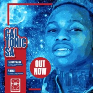 Caltonic SA, Imali, Abidoza, Latoya, Thabz Le Madonga, mp3, download, datafilehost, toxicwap, fakaza, House Music, Amapiano, Amapiano 2019, Amapiano Mix, Amapiano Music, House Music