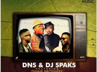 Dns, DJ Sparks, Dvine Brothers, Gold Digger, download ,zip, zippyshare, fakaza, EP, datafilehost, album, House Music, Amapiano, Amapiano 2019, Amapiano Mix, Amapiano Music