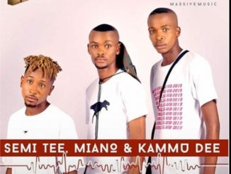 Semi Tee, Kammu Dee, Miano, Gabadiya, Vocal Mix, mp3, download, datafilehost, toxicwap, fakaza, Afro House, Afro House 2019, Afro House Mix, Afro House Music, Afro Tech, House Music