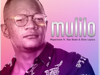 Mapentane %E2%80%93 Mulilo Ft. Nas Beats and Blow Lepara zamusic - Mapentane – Mulilo Ft. Nas Beats and Blow Lepara