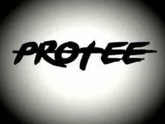 Martin Garrix %E2%80%93 Animals Pro Tee%E2%80%99s 2020 Gqom Rebass zamusic - Martin Garrix – Animals (Pro-Tee's 2020 Gqom Rebass)