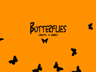 Santic %E2%80%93 Butterflies Ft. Mbali zamusic - Santic – Butterflies Ft. Mbali